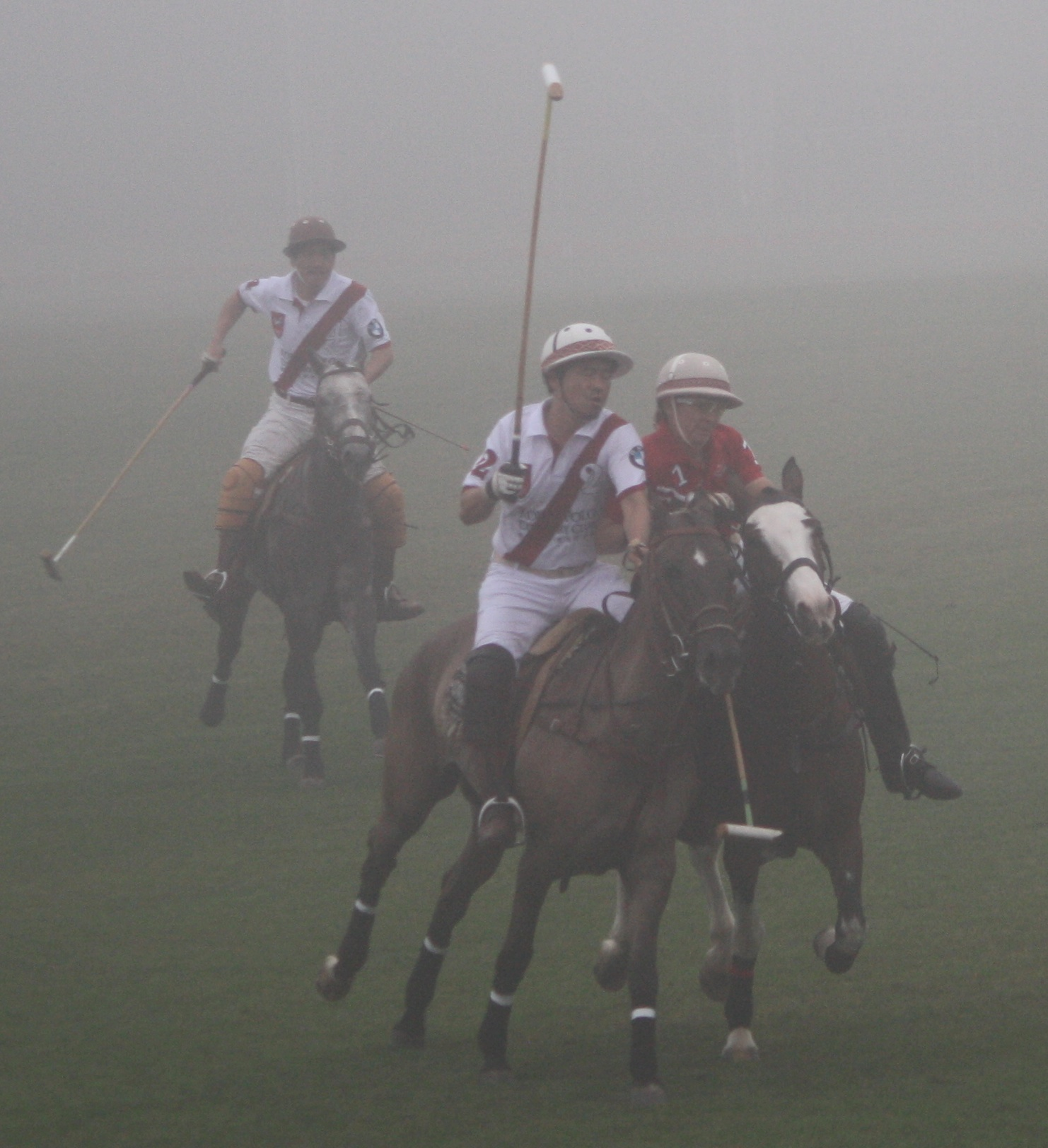 Singapore Polo Club team wins BMW Cup 2011 at Korea Polo Club